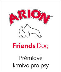 Arion Friends Dog